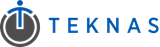 Teknas Government Logo